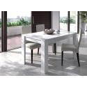 Table à manger en chêne / blanc