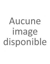 Fauteuil Releveur Pivotant
